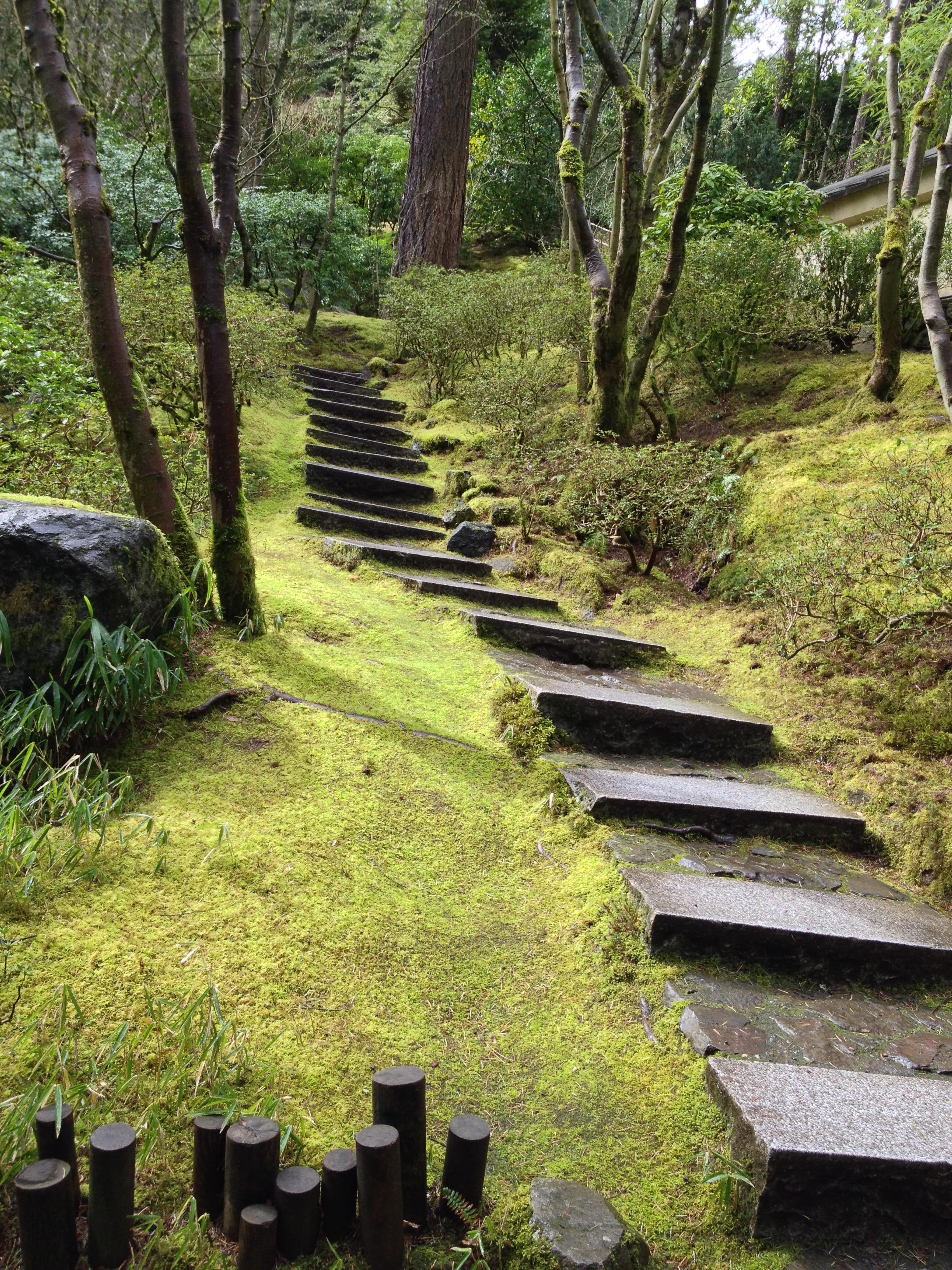 stairforest